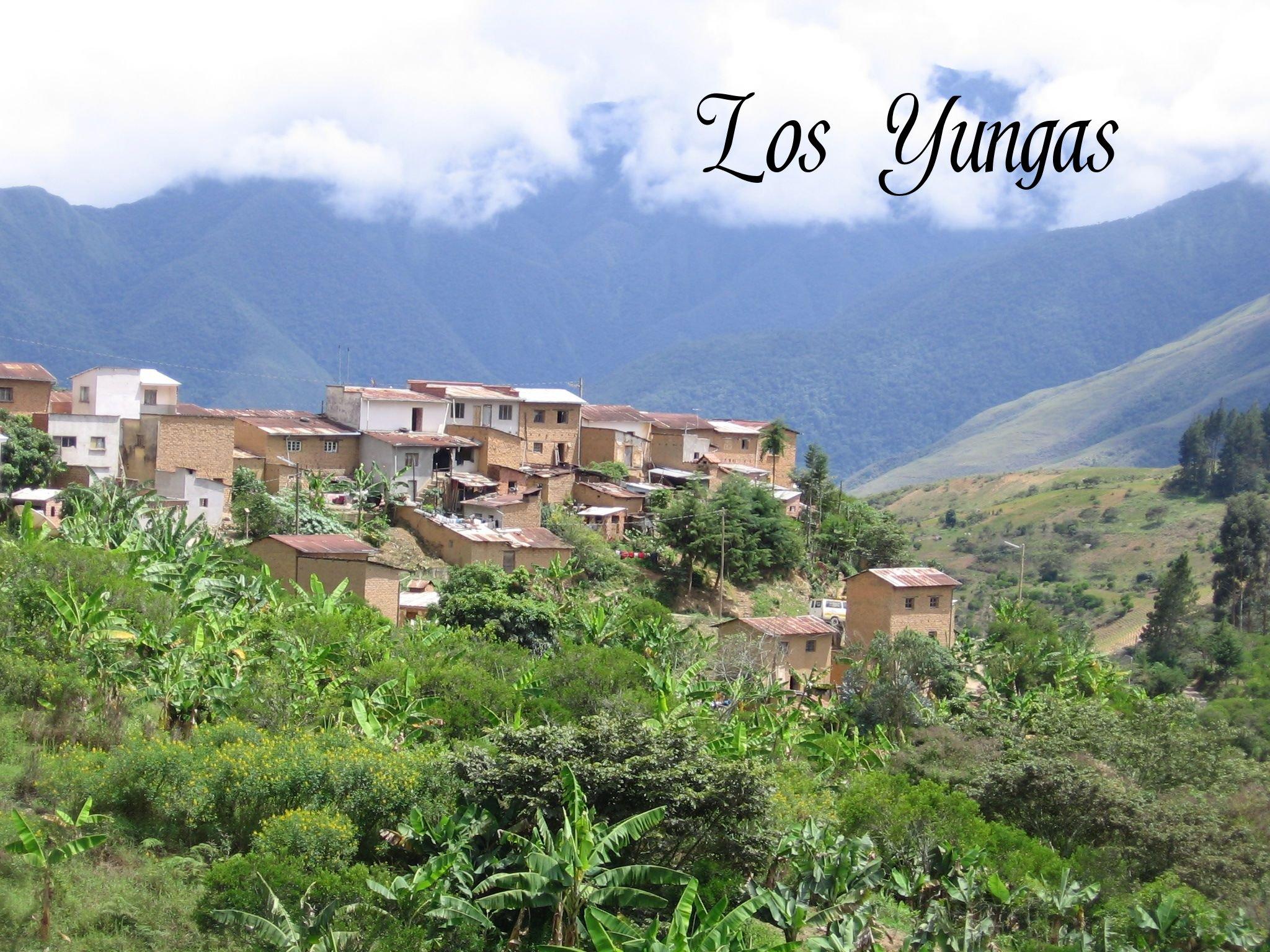 los yungas de bolivia: